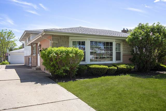 8855 N Elmore Street, Niles, IL 60714 (MLS #11078624) :: Helen Oliveri Real Estate