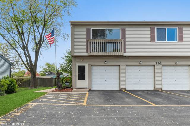236 Algonquin Court D, Bolingbrook, IL 60440 (MLS #11078746) :: Littlefield Group
