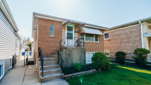 4421 N Natchez Avenue, Harwood Heights, IL 60706 (MLS #11078869) :: Helen Oliveri Real Estate