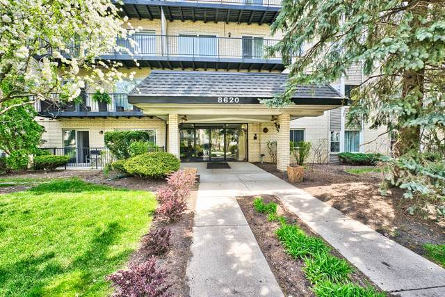 8620 Waukegan Road #111, Morton Grove, IL 60053 (MLS #11078935) :: Helen Oliveri Real Estate