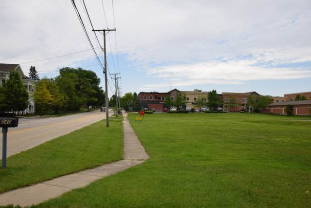 216 N White Street, Frankfort, IL 60423 (MLS #11078983) :: Helen Oliveri Real Estate