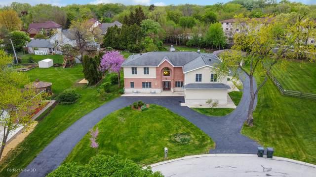1760 N Lee Court, Palatine, IL 60074 (MLS #11079129) :: Helen Oliveri Real Estate