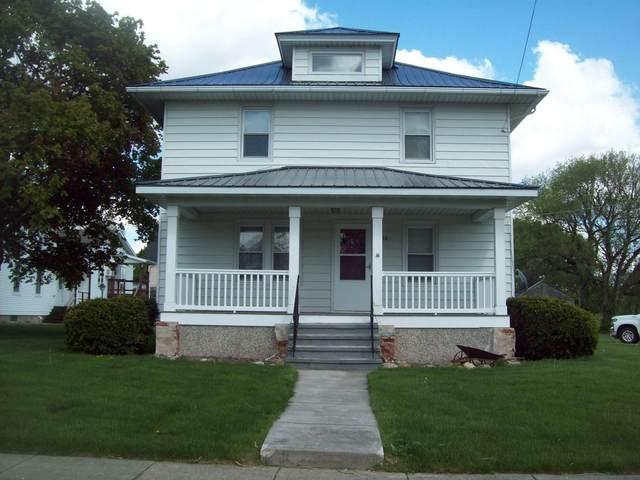 203 S Main Street, Ohio, IL 61349 (MLS #11079162) :: Littlefield Group