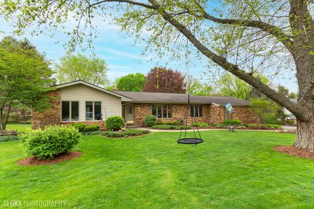 5914 Hamilton Drive, Crystal Lake, IL 60014 (MLS #11079201) :: Ani Real Estate