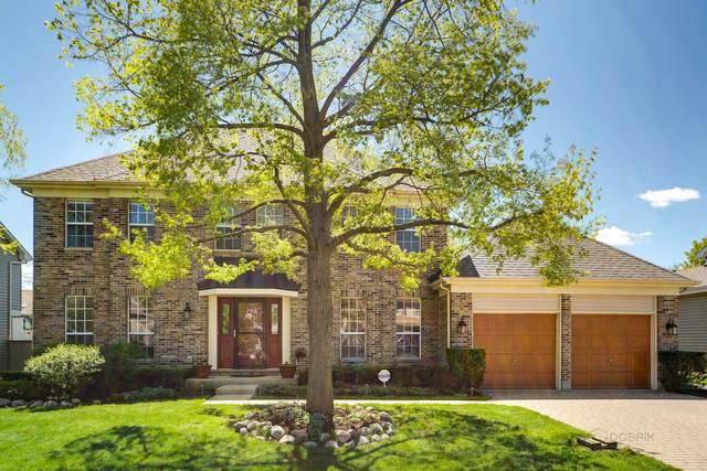 1641 Blackburn Drive, Mundelein, IL 60060 (MLS #11079368) :: Helen Oliveri Real Estate