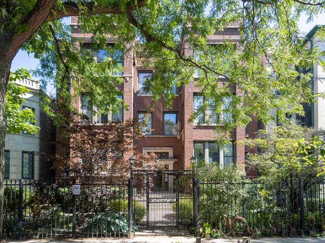 5825 N Winthrop Avenue 1S, Chicago, IL 60660 (MLS #11079373) :: Suburban Life Realty