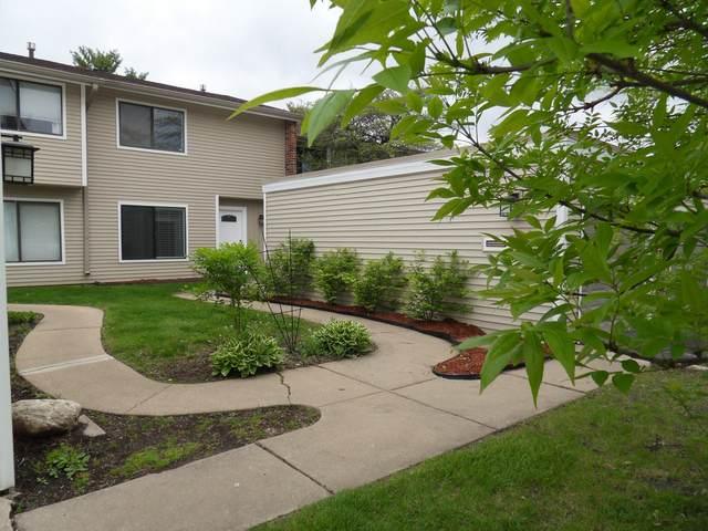1065 Cascade Drive, Aurora, IL 60506 (MLS #11079485) :: O'Neil Property Group
