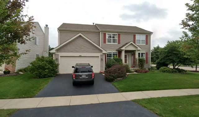 346 Minuet Circle, Volo, IL 60073 (MLS #11079517) :: BN Homes Group