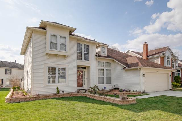 329 Southfield Drive, Vernon Hills, IL 60061 (MLS #11079626) :: Helen Oliveri Real Estate