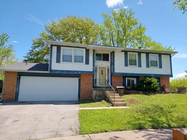 5611 Allemong Drive, Matteson, IL 60443 (MLS #11079632) :: Helen Oliveri Real Estate