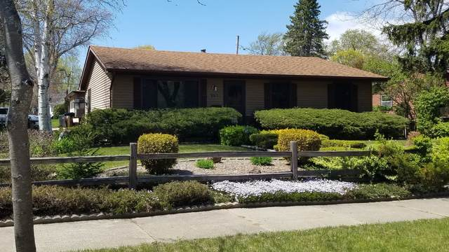 3120 Elisha Avenue, Zion, IL 60099 (MLS #11079648) :: Rossi and Taylor Realty Group