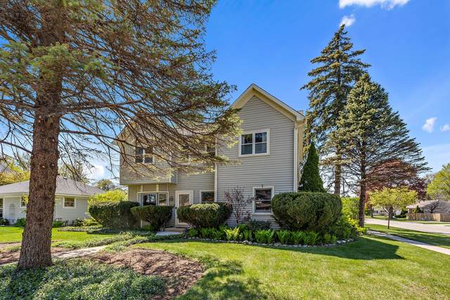 218 N School Street, Mount Prospect, IL 60056 (MLS #11079716) :: Helen Oliveri Real Estate