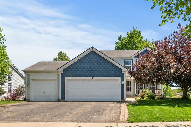 279 Paine Street, South Elgin, IL 60177 (MLS #11079828) :: Suburban Life Realty