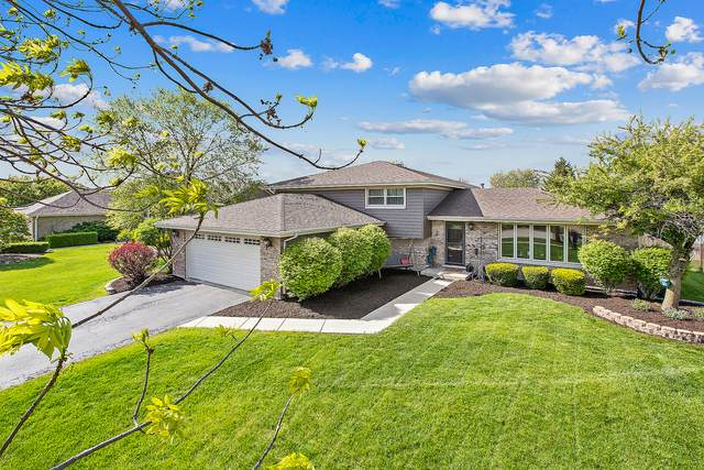 7634 W Lakeview Terrace, Frankfort, IL 60423 (MLS #11079880) :: Helen Oliveri Real Estate