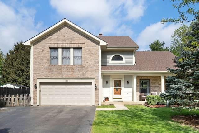 1230 Quail Run Avenue, Bolingbrook, IL 60490 (MLS #11079954) :: Helen Oliveri Real Estate