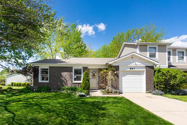 867 Colony Lake Drive, Schaumburg, IL 60194 (MLS #11079982) :: Littlefield Group