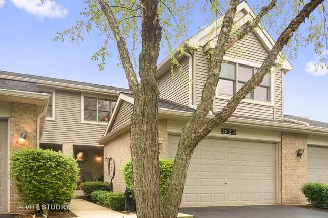 529 N Walden Drive, Palatine, IL 60067 (MLS #11079996) :: Helen Oliveri Real Estate