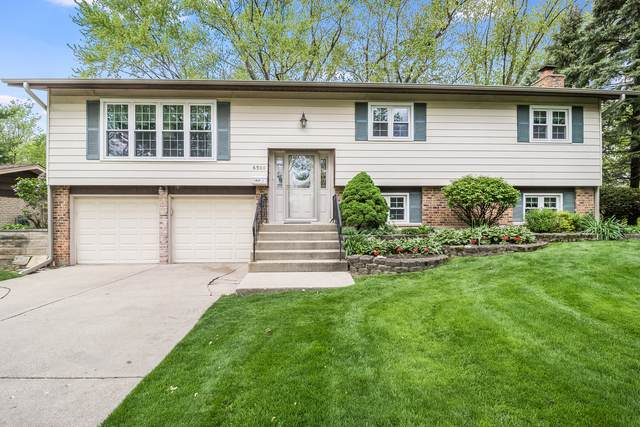 6500 Lyman Avenue, Downers Grove, IL 60515 (MLS #11080048) :: Helen Oliveri Real Estate