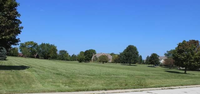 185 N Meadowlark Drive, Hawthorn Woods, IL 60047 (MLS #11080075) :: The Wexler Group at Keller Williams Preferred Realty