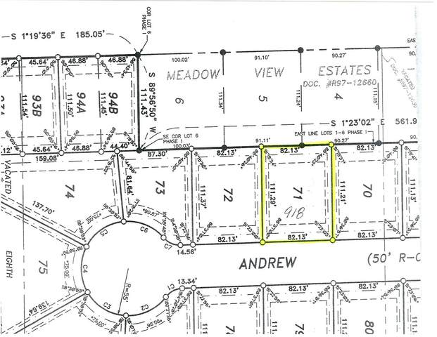 918 Andrew Lane, Marseilles, IL 61341 (MLS #11080131) :: Ani Real Estate