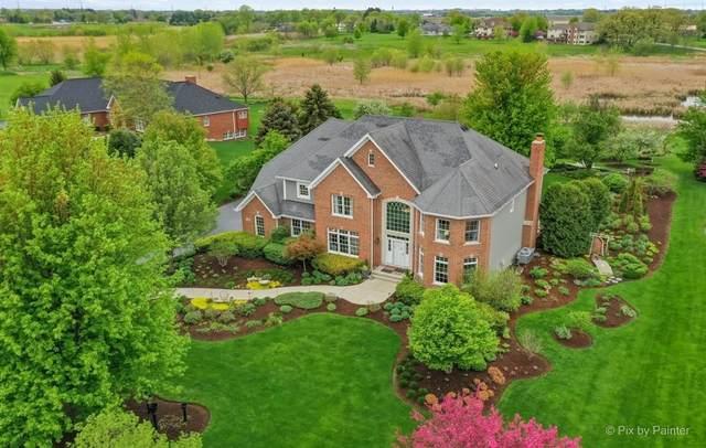 11N600 Hunter Trail, Elgin, IL 60124 (MLS #11080149) :: Ani Real Estate
