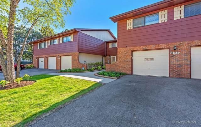 844 Dighton Lane 19C, Schaumburg, IL 60173 (MLS #11080191) :: Helen Oliveri Real Estate