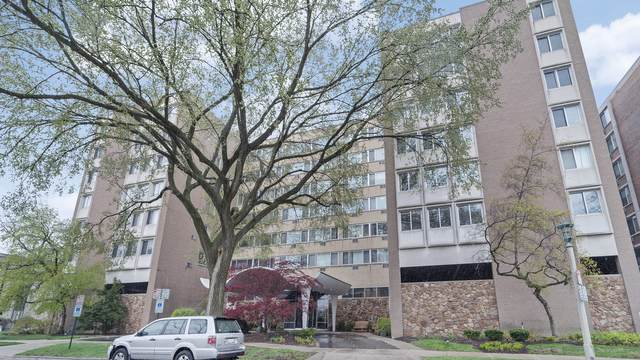 151 N Kenilworth Avenue 1C, Oak Park, IL 60301 (MLS #11080294) :: Carolyn and Hillary Homes
