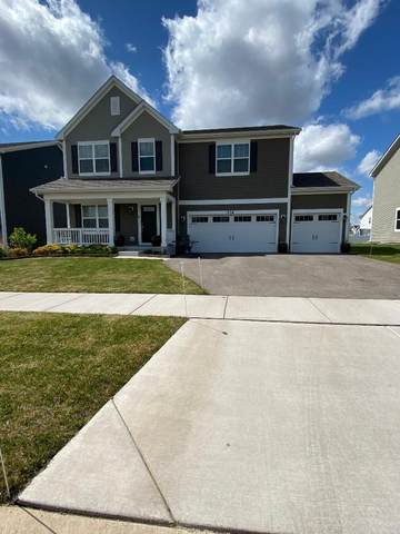 316 Longview Drive, Elgin, IL 60124 (MLS #11080297) :: Ani Real Estate
