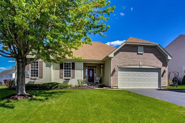 214 Caledonian Avenue, Sugar Grove, IL 60554 (MLS #11080300) :: Helen Oliveri Real Estate