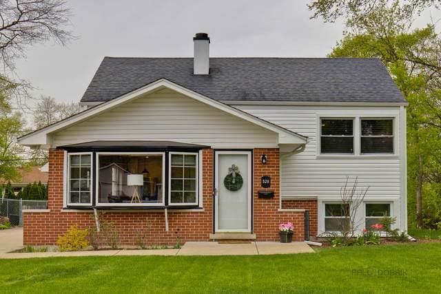 528 S Beverly Street, Wheaton, IL 60187 (MLS #11080345) :: Ani Real Estate