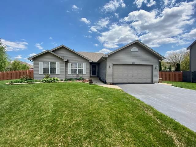 216 Cambridge Court, Oswego, IL 60543 (MLS #11080367) :: BN Homes Group
