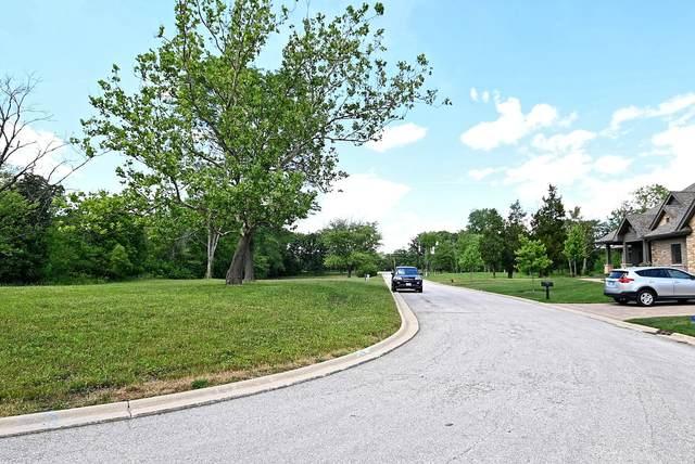 12908 S Arbor Court, Palos Park, IL 60464 (MLS #11080509) :: Ani Real Estate