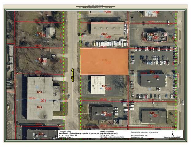 859 N Addison Avenue N, Elmhurst, IL 60126 (MLS #11080553) :: Littlefield Group