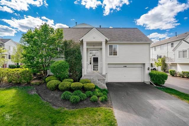 648 S Rosehall Lane, Round Lake, IL 60073 (MLS #11080555) :: Helen Oliveri Real Estate