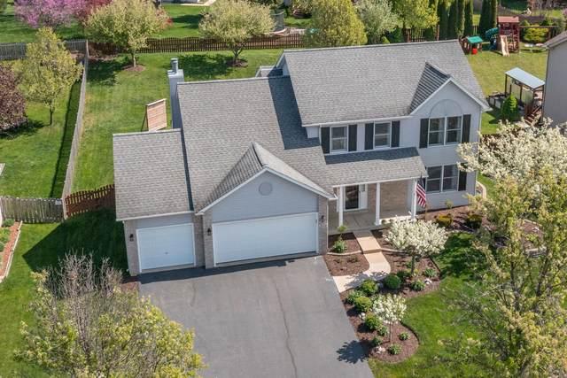 317 Morgan Valley Drive, Oswego, IL 60543 (MLS #11080681) :: Ani Real Estate