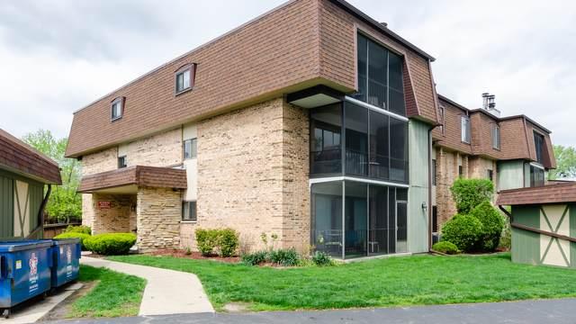 11138 Center Road 11138D, Palos Hills, IL 60465 (MLS #11080763) :: Helen Oliveri Real Estate
