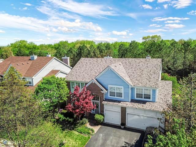 379 Sycamore Street, Vernon Hills, IL 60061 (MLS #11080791) :: Helen Oliveri Real Estate