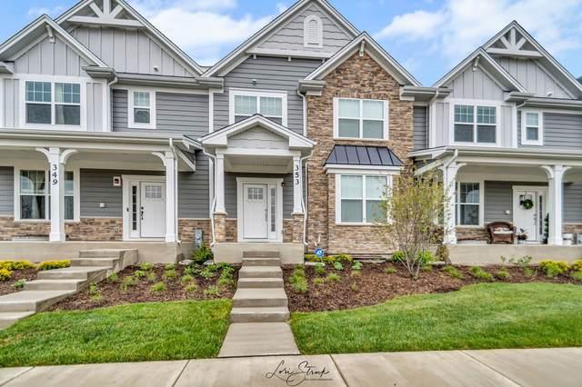 353 Hoffman Drive, Buffalo Grove, IL 60089 (MLS #11080872) :: Helen Oliveri Real Estate