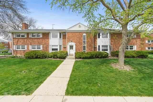 510 W Miner Street 1D, Arlington Heights, IL 60005 (MLS #11080916) :: Littlefield Group