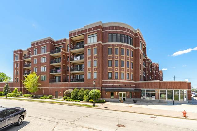 225 Main Street #307, Roselle, IL 60172 (MLS #11081053) :: Ani Real Estate