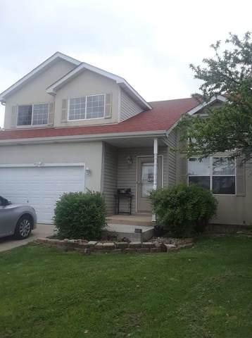809 Edgerton Drive, Joliet, IL 60435 (MLS #11081064) :: Ani Real Estate