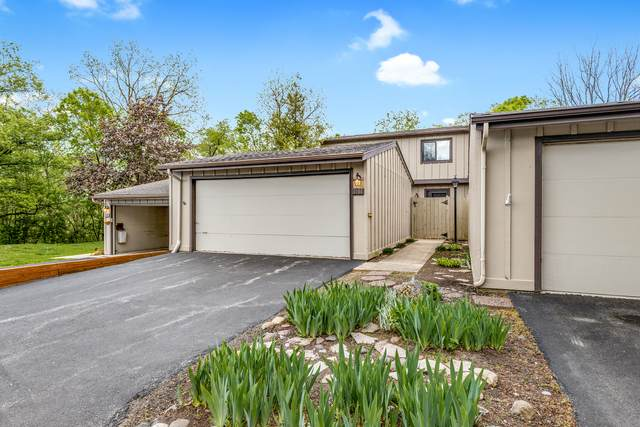 1101 Florimond Drive, Elgin, IL 60123 (MLS #11081124) :: Suburban Life Realty