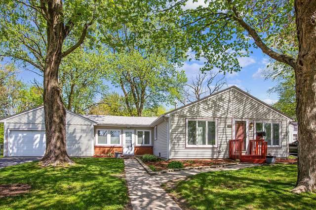 143 Dorsetshire Drive, Steger, IL 60475 (MLS #11081186) :: The Spaniak Team