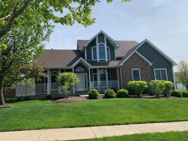 1002 Catherine Gln Drive, Minooka, IL 60447 (MLS #11081228) :: Helen Oliveri Real Estate