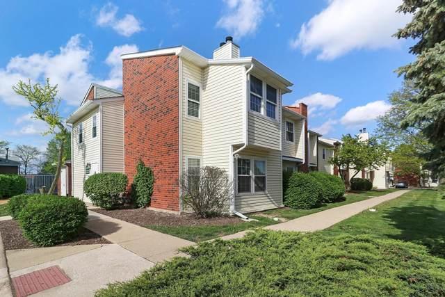 1223 Wyndham Court #106, Palatine, IL 60074 (MLS #11081286) :: Helen Oliveri Real Estate