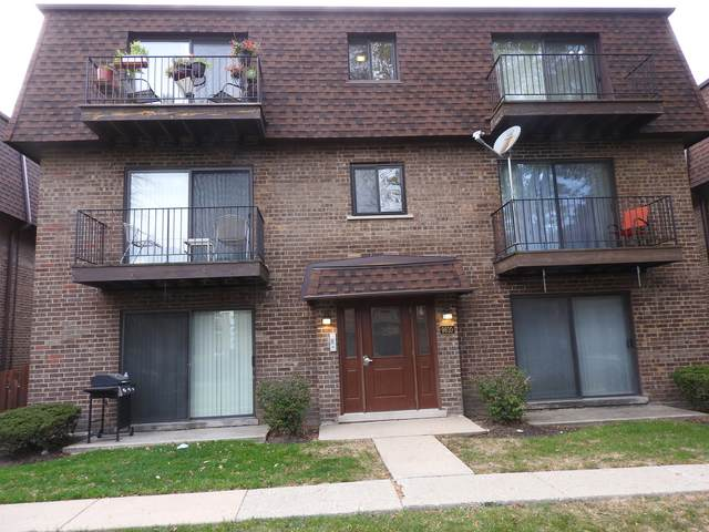 9810 Bianco Terrace A, Des Plaines, IL 60016 (MLS #11081478) :: Helen Oliveri Real Estate