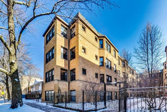 7639 N Greenview Avenue 1E, Chicago, IL 60626 (MLS #11081509) :: Suburban Life Realty
