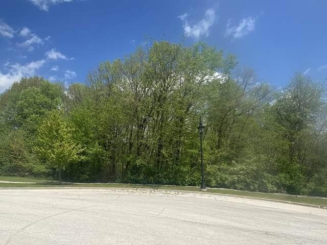 24826 W River Run Court, Shorewood, IL 60404 (MLS #11081519) :: Helen Oliveri Real Estate
