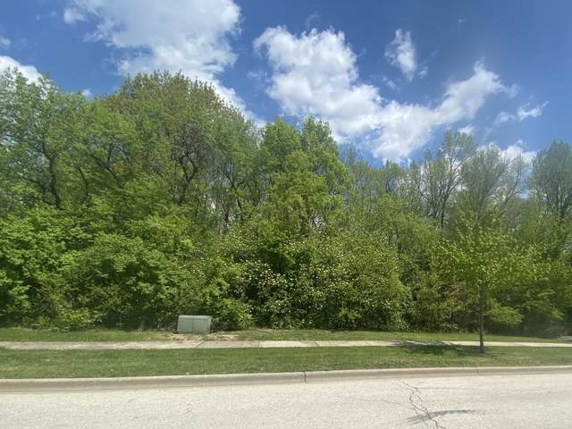 24834 W River Run Court, Shorewood, IL 60404 (MLS #11081521) :: Helen Oliveri Real Estate