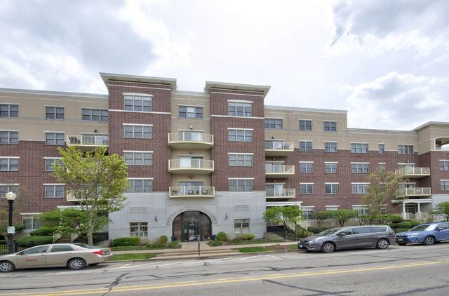 965 Rogers Street #103, Downers Grove, IL 60515 (MLS #11081730) :: Littlefield Group